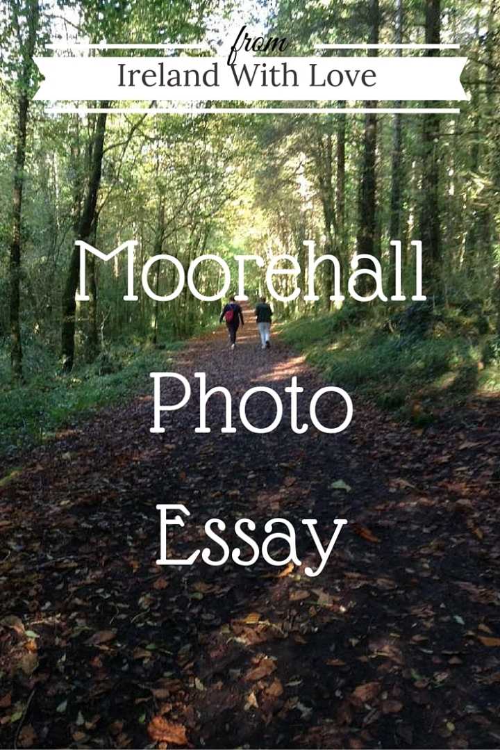 Step back in time to the landed gentry with my Moore Hall Photo Essay.