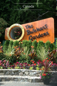 Come on a walk with me through The Butchart Gardens with my photo essay