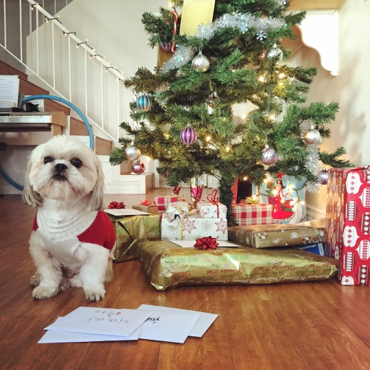 Christmas Around the World U.S.A