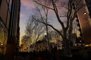 shopping-ginza-nightlights